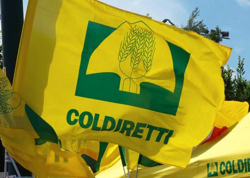 Coldiretti Varese: «Rafforzare le misure  di sostegno nei settori più in crisi»