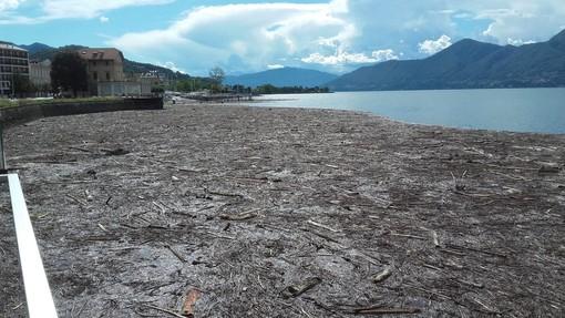 Quando la spiaggia è sul lago: al via da oggi la stagione balneare in Piemonte