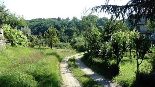 I Verdi di Varese: «Su via Selene non ci presteremo alle liturgie della vecchia politica»
