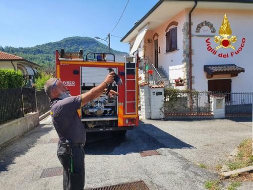 Cornacchia resta incastrata in una canna fumaria: liberata dai vigili del fuoco