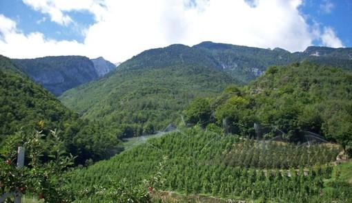 Agricoltura, al via il nuovo censimento: coinvolto anche il CAA di Coldiretti Varese