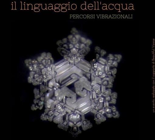 Il linguaggio dell'acqua: la nuova installazione di Alessandro Puccia al Battistero di Velate