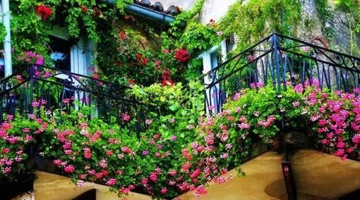 Balconi Fioriti: al via il concorso di Coldiretti Varese, segnale di ripartenza del comparto florovivaistico