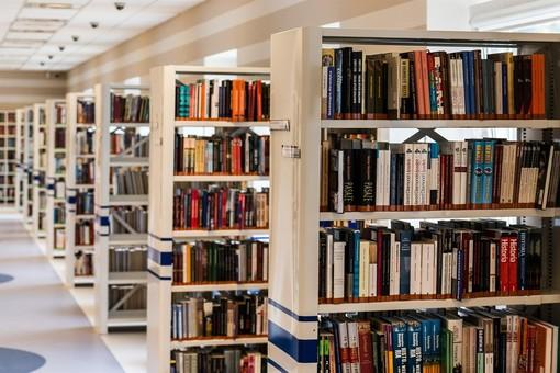 Biblioteche in provincia: prenotazioni online sospese dal 17 al 22 giugno. A Gallarate mercoledì cambia l'orario di apertura