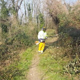 Besozzo riscopre gli antichi sentieri immersi nella natura: presto a disposizione di cittadini e sportivi