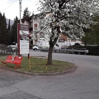 Cittiglio, l'associazione Atletica 3V dona una panchina rossa al paese