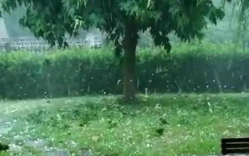 VIDEO. Grandinata devastante a Gorla Minore con chicchi di 4 centimetri