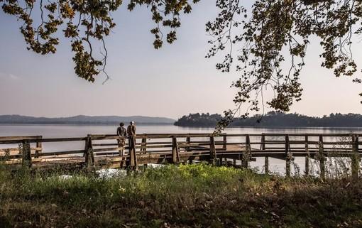 Lago di Varese. L'assessore Cattaneo: «Il risanamento sta diventando sempre più realtà»