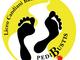 Pedibustis: un bollino giallo ti porta a spasso tra arte e cultura locale