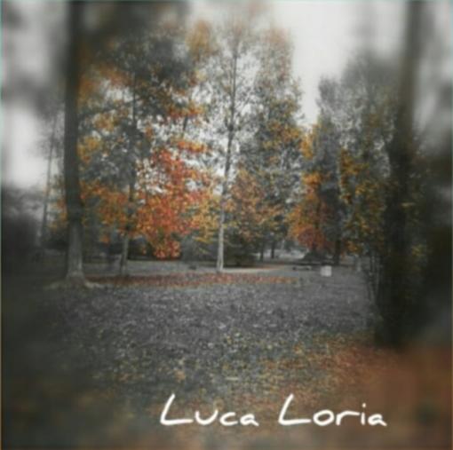 I colori dell'autunno sono i colori dell'anima: ecco uno degli scatti del fotografo Luca Loria in mostra a Varese