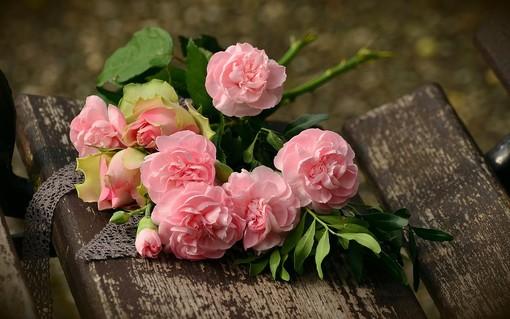 Laveno Mombello diventa capitale della rosa