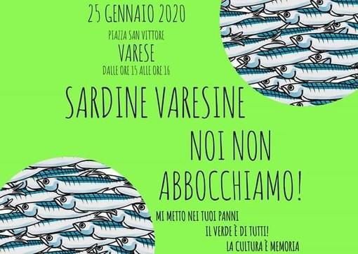 Le sardine arrivano a Varese: «Portiamo un seme di speranza nella provincia feudo della Lega. Speriamo che germogli»