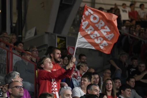 LE FOTO DEI TIFOSI - Forza Varese, continuiamo a sognare insieme!
