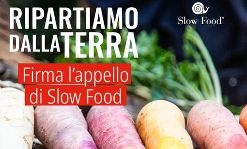 """L'appello di Slow Food che tutti possiamo firmare: """"Ripartiamo dalla terra"""" per salvare agricoltura e ristorazione"""
