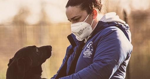 L'appello del canile: «Troppi cani con problematiche comportamentali, aiutateci ad adeguare la struttura»