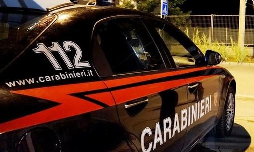 Fanno festa in casa, ma arrivano i Carabinieri e trovano 4 piante di marijuana