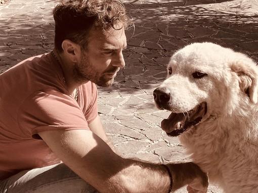 Aggressione a Casbeno, si cerca ancora il cane. L'esperto: «Sono animali diffidenti ma estremamente territoriali»