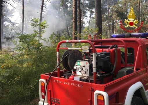 In fiamme il Parco Pineta, vigili del fuoco di Tradate e Saronno in azione