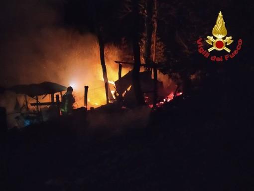 Capanno in fiamme nel bosco, vigili del fuoco al lavoro ad Arcisate