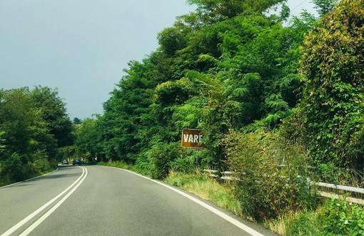 FOTO. La Città Giardino si allarga: verde, rami e piante nascondono pericolosamente i cartelli nell'ultimo tratto di autostrada