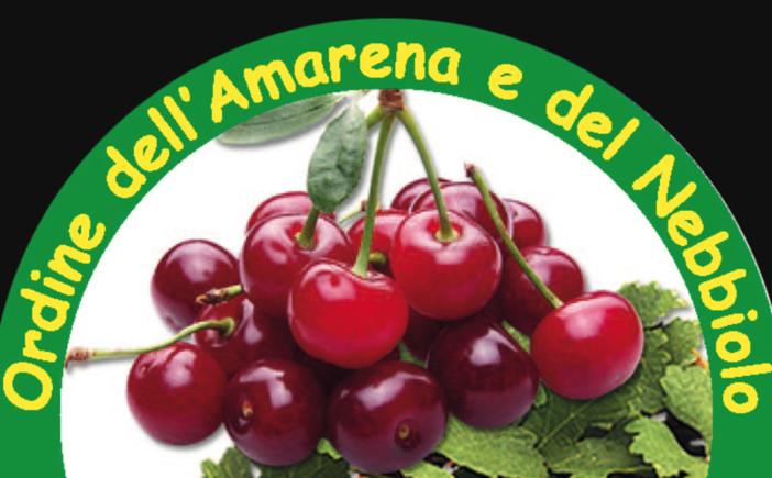 """Amarene pronte a finire """"al sole"""", in Piemonte c'è l'Ordine dell'Amarena e del Nebbiolo"""