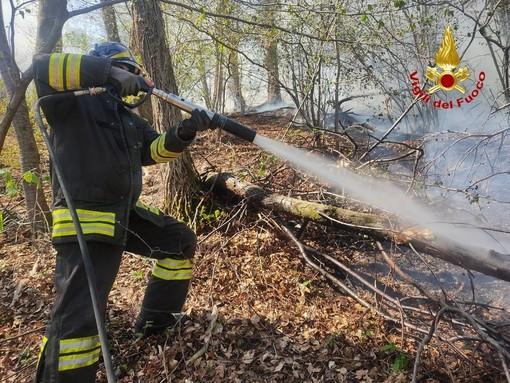 Incendi nei boschi, rogo sotto controllo a Marzio. Allerta altissima, il pericolo è il vento