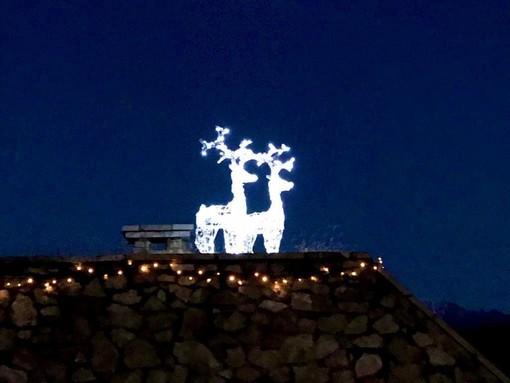 Le due magiche renne illuminate che vi aspettano al Sacro Monte da domenica 8 dicembre, giorno dell'accensione di albero e luci di Natale con altri mille eventi in programma (foto Giuseppe Marangon-La Varese Nascosta)