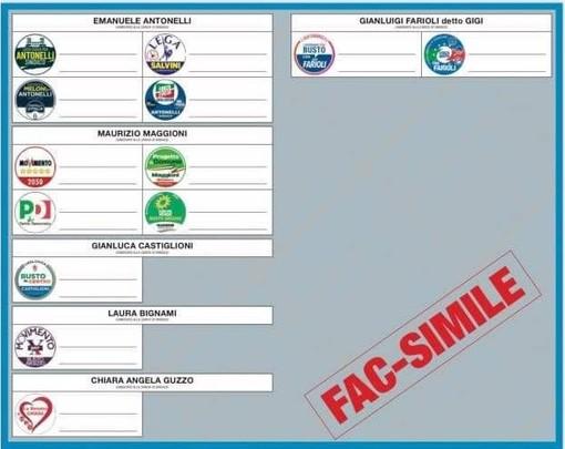 Busto e il fac-simile della scheda elettorale: Farioli è «l'unico a destra»
