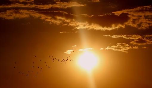 Una giornata tropicale a Varese: massima di 35 gradi. Domani si batterà il record storico?