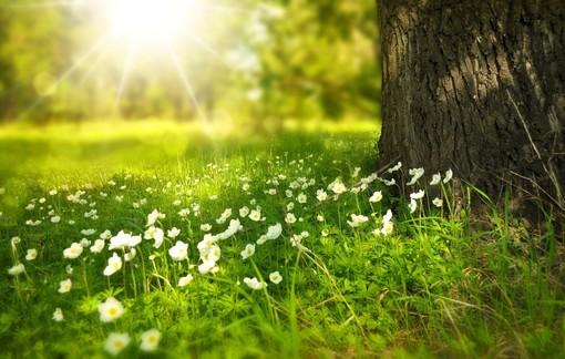 METEO. L'estate varesina? La più fresca degli ultimi sette anni. Ma per ora resta il sole