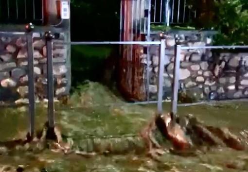 VIDEO. Maltempo sul Varesotto, esonda il Tinella. A Luvinate famiglie evacuate e statale 394 sott'acqua