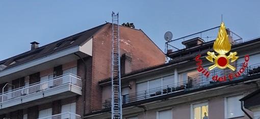 Tempesta nel Luinese, 30 interventi dei vigili del fuoco. Domato l'incendio boschivo a Brezzo