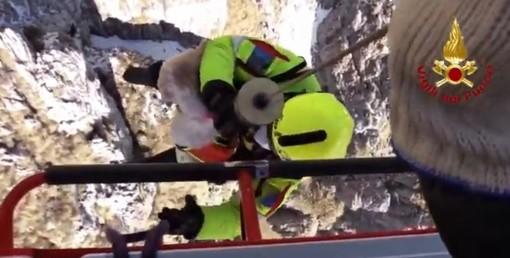 """Il """"Drago"""" si alza in volo da Malpensa e salva due cani dispersi in montagna da giorni"""