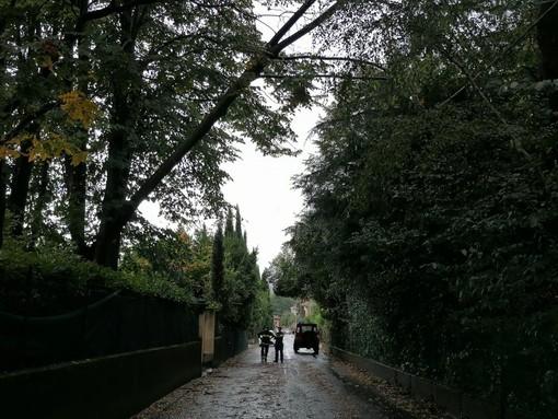 Alberi piegati dal vento, rami e foglie in strada. Chiusa via Torquato Tasso a Cartabbia